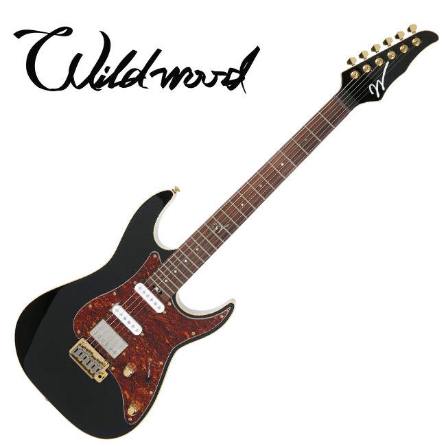 Wildwood WD-DTC2 (Black) / 와일드우드 일렉기타