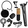 Studio Microphone Set BM800 (XLR)