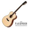 Parkwood 어쿠스틱기타 P620
