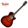 Taylor 614ce LTD / 2019 Namm Limited Edition