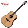 Taylor 517 Buliders Edition / 테일러 통기타