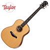Taylor 717 Buliders Edition / 테일러 통기타