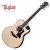 Taylor 816ce Buliders Edition / 테일러 통기타
