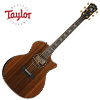 Taylor 914ce LTD / 2019 Namm Limited Edition