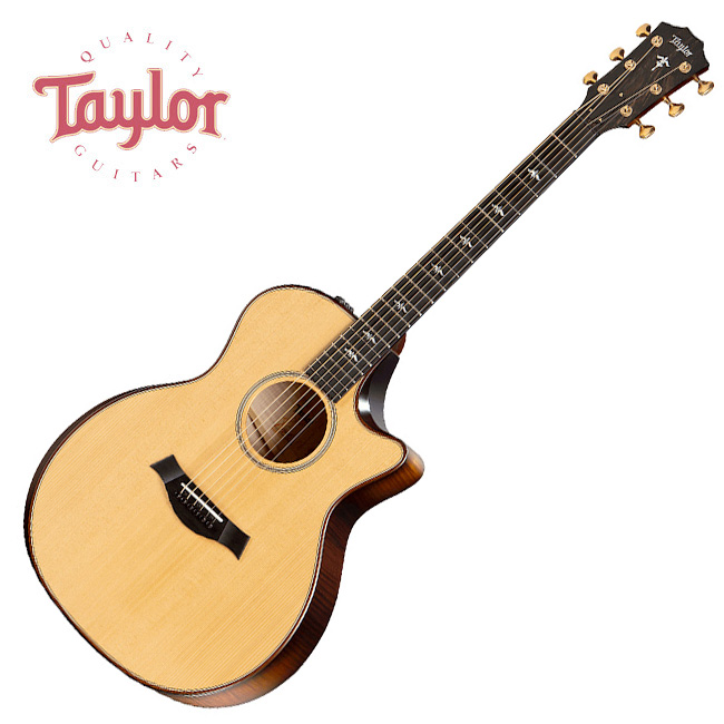 Taylor 614ce Buliders Edition / 테일러 통기타
