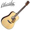 Blueridge Craftsman BR-140A