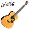 Blueridge Historic BR-143