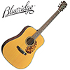Blueridge Historic BR-140