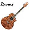 Ibanez - Exotic Wood EW20BGE / 아이바네즈 통기타