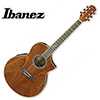 Ibanez - Exotic Wood EW35SPE / 아이바네즈 통기타