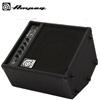 Ampeg BA108 V2 / 베이스 콤보앰프