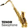 YAN YTS-881 Saxophone / 얀 테너 색소폰 골드 (색소폰, 섹소폰)