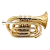 YAN YT-350G Trumpet / 얀 미니트럼펫