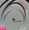 Galli String - JF Jazz Flat Bass String 045-130 / 갈리 6현 베이스 스트링 (JF 4530)