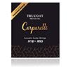 Carparelli Acustic Trucoat String<br>가장 내추럴한 코팅 스트링 (012-053)