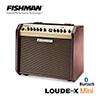 Fishman Loudbox Mini BT / 블루투스 어쿠스틱앰프