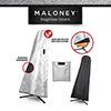 Maloney Guitar Cover / 기타(통기타, 일렉기타, 베이스 기타) 커버