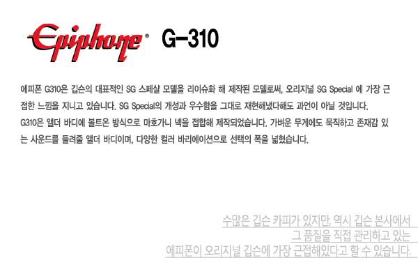 Epiphone G310